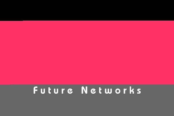 株式会社フューチャーネットワークス